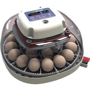 Egg Tech 512A 12 ägg