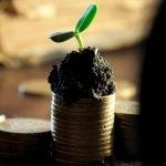 Bästa fonderna 2021 – hitta rätt fonder för nybörjare
